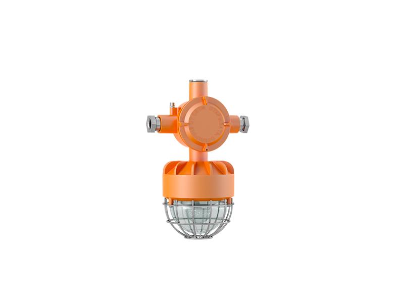 Светильник светодиодный Ex-FTN 02-30-50