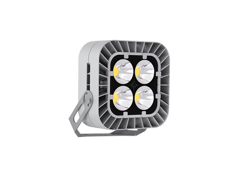 Светильник светодиодный FFL 01-450-750-xxx (-F20/-F40)
